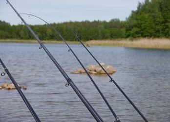 quelle canne a pêche pour la pêche à la perle